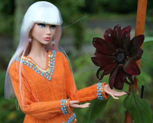 Poppy in the Garden