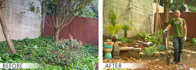 before and after shot of my garden design