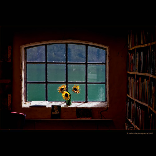 library by stella-mia