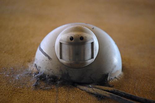 L'omino felice dalle sabbie mobili - © Copyright 2010 Fulvio Petri