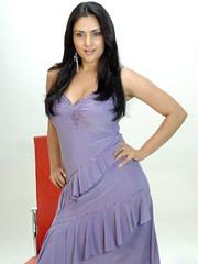 Indian Actress Ramya Hot Sexy Images Set-2  (33)