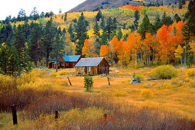 National Geographic Wallpaper Fall Foliage Carson Pass And Hope Valley California Alltrails Com