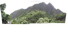 Iao Valley Panorama