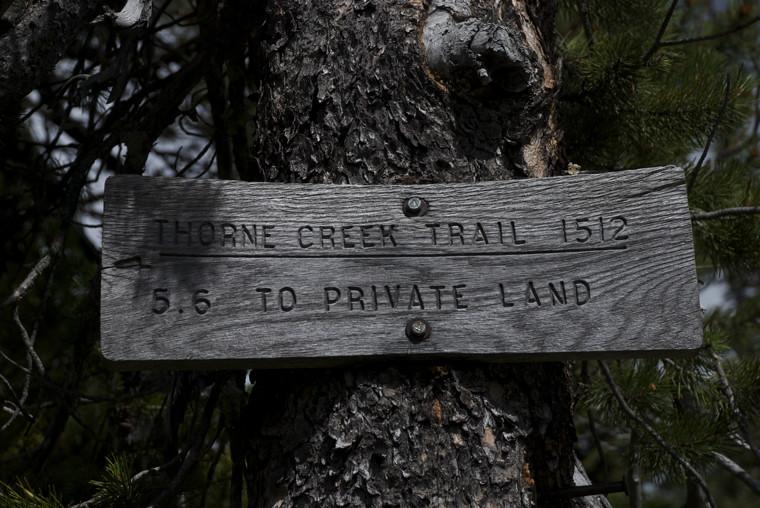 Junction of trails 460 & 1512