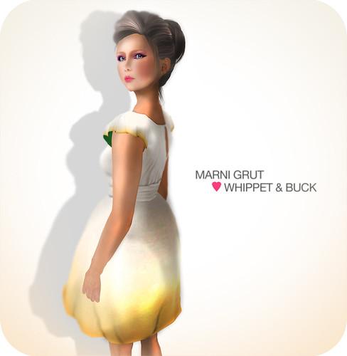 Marni Grut <3 Whippet & Buck