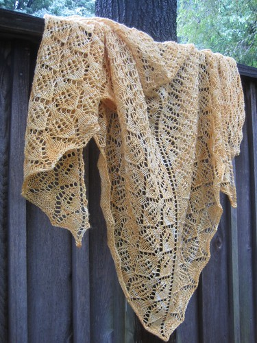 Aug22-Shawl5