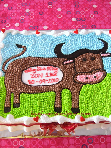 Cow cake11