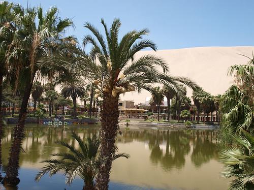 Oasis de Huacachina (1)