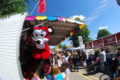 Naperville Last Fling Carnival 211
