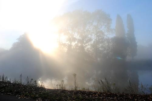 Misty Dew
