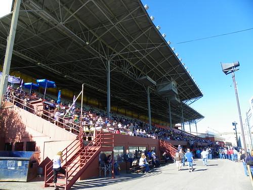 YD Grandstand 5
