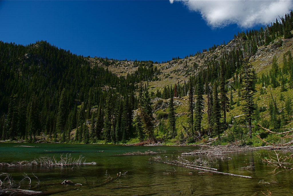 Goat Lakes and trail 478