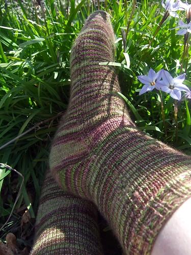 Yukon Socks