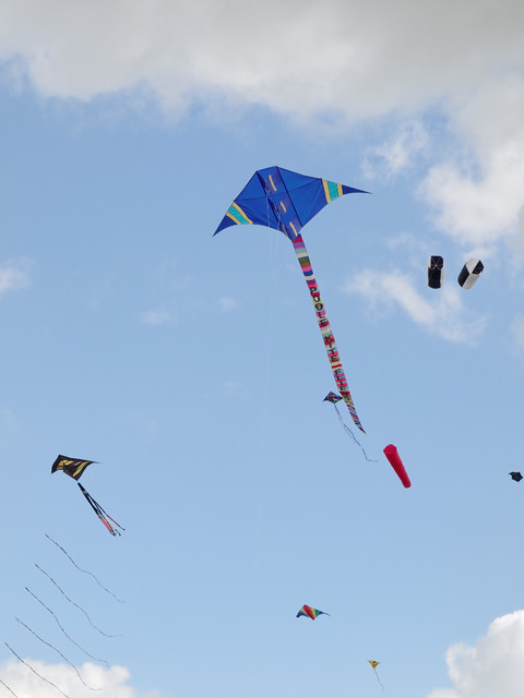 Eggerdon Hill Kite Festival 2010_11