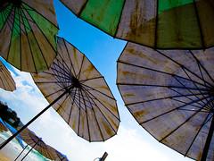 Beach Chair Umbrellas