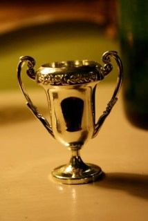 trophy 1 | the both and | shorts and longs | julie rybarczyk