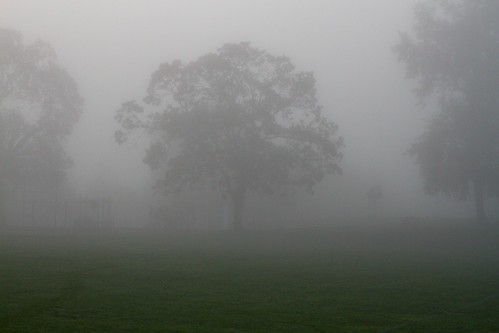 Mist is when the sky is tired of flight (mark 2)
