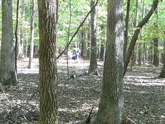 Running the trail -- part of the Adventure Race