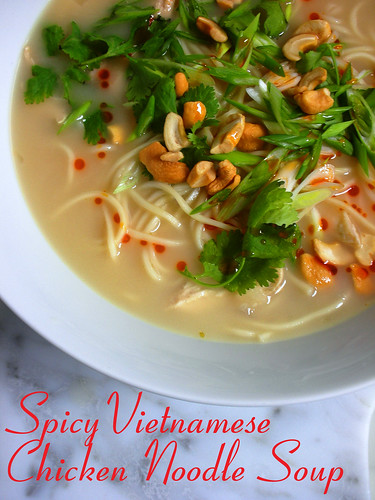 spicy Vietmanese chicken noodle soup