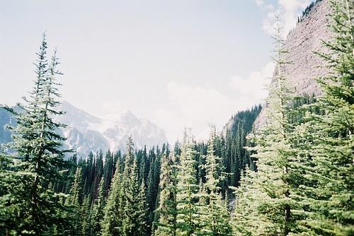hiking bigbeehive