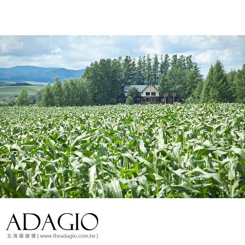 ADAGIO_9