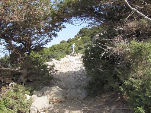 Elafonisi, Ελαφονήσι