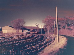 Farm at night