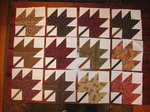 Maple Leaf Blocks