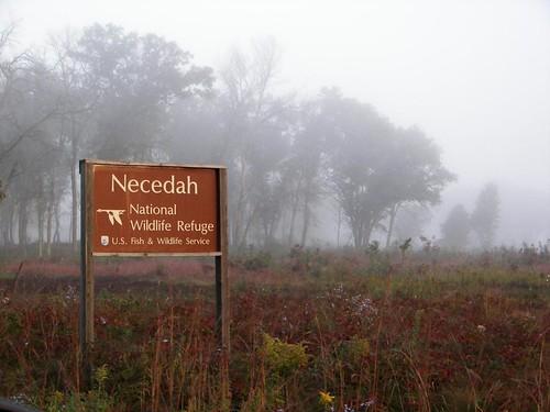 Morning fog over Necedah