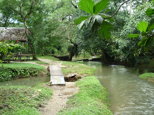 Unser Haus dort unten am Fluss, Palenque