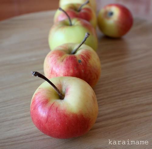 Omenoita. Apples