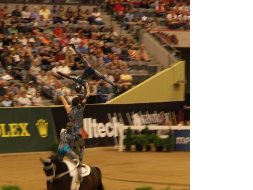 germany vaulting