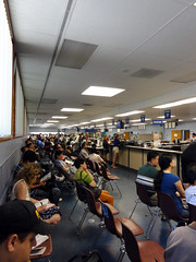 CA DMV 00733