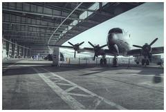 Tempelhof Airport #I