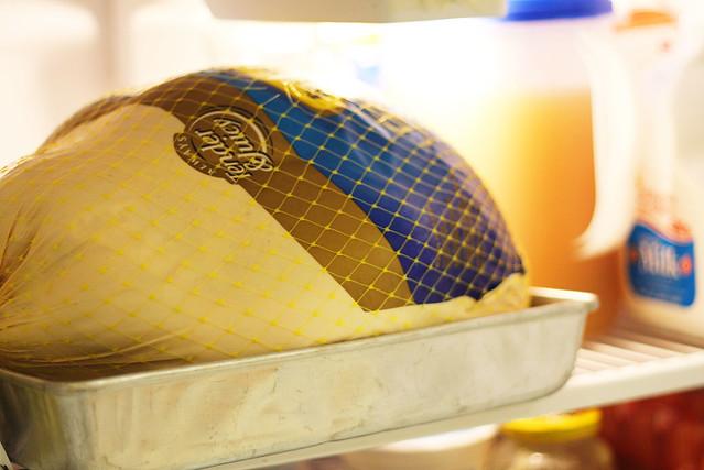 20 lb Turkey