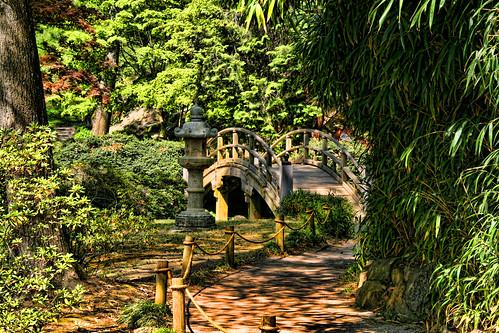 The Bridge, Lantern, and the Path