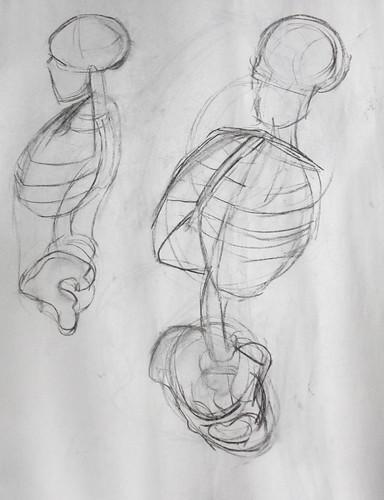Anatomical life drawing