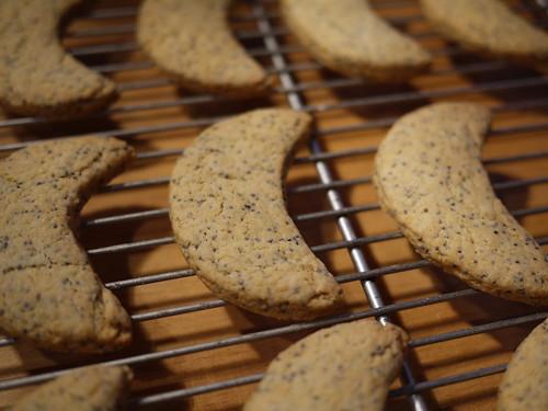 Moon Cookies - Cooling
