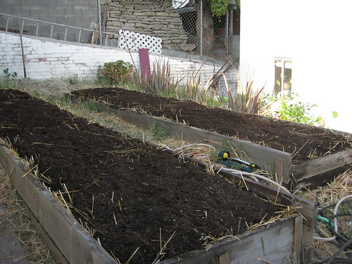 Garden 7: Topsoil and a little more compost