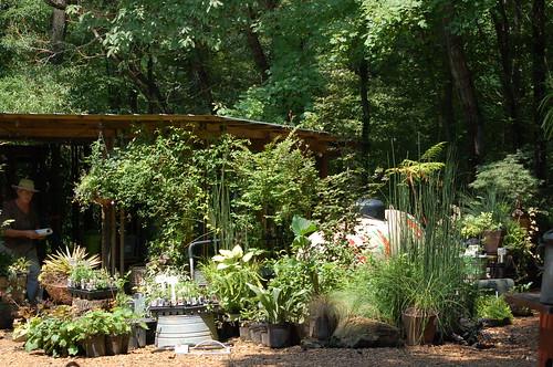 Gardens Oy Vey, Arlington, Tenn.