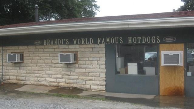 brandi's hot dogs - the store