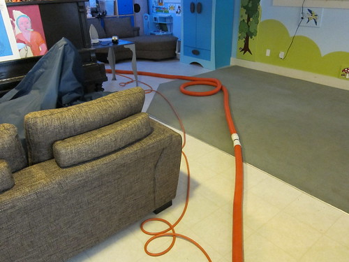 Carpet Cleaning Day!