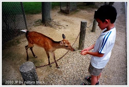 b-20100702_natura133_018.jpg