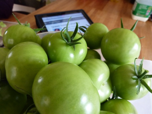 Green toms from the garden