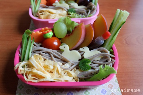 Cold soba bento . Duck pond