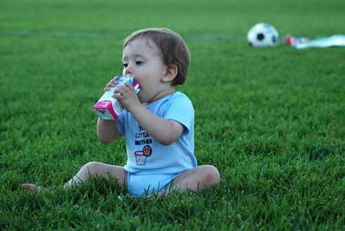 Soccer VI
