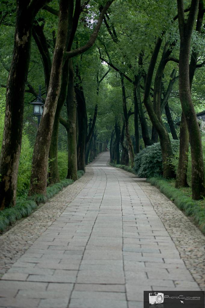 Shanghai 2010 (307 of 367)