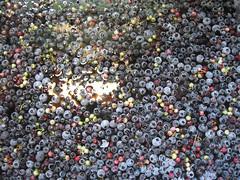 washingberries