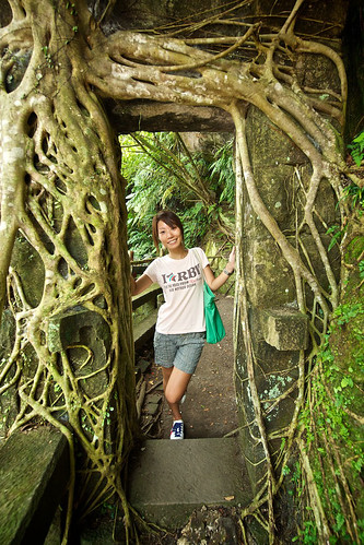 Tree roots overgrowing an old doorway in Taiwan