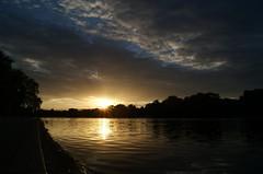serpentine sunset